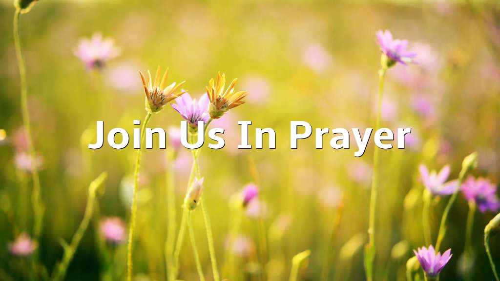 Please join us in prayer
